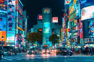 Excursiones desde Tokio
