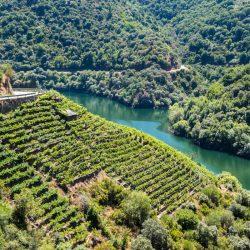Excursiones Ribeira Sacra desde Ourense