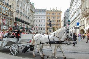 excursiones viena caballos carreta