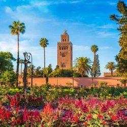 Excursiones desde Marrakech 1 día