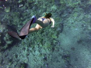 excursiones cabrera snorkel nadar buceo